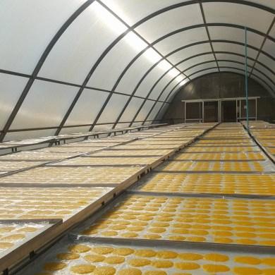 โครงการสนับสนุนการลงทุนติดตั้งใช้งานระบบอบแห้งพลังงานแสงอาทิตย์ (พาราโบล่าโดม) ปี 2562 19 -