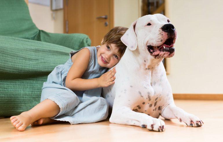 โรคผิวหนังในสัตว์เลี้ยง ปัญหาหนักอกที่มาพร้อมหน้าฝน รพส.ทองหล่อ แนะเคล็ดลับดีๆ ป้องกันสัตว์เลี้ยงแสนรักห่างไกลโรคผิวหนัง 13 -