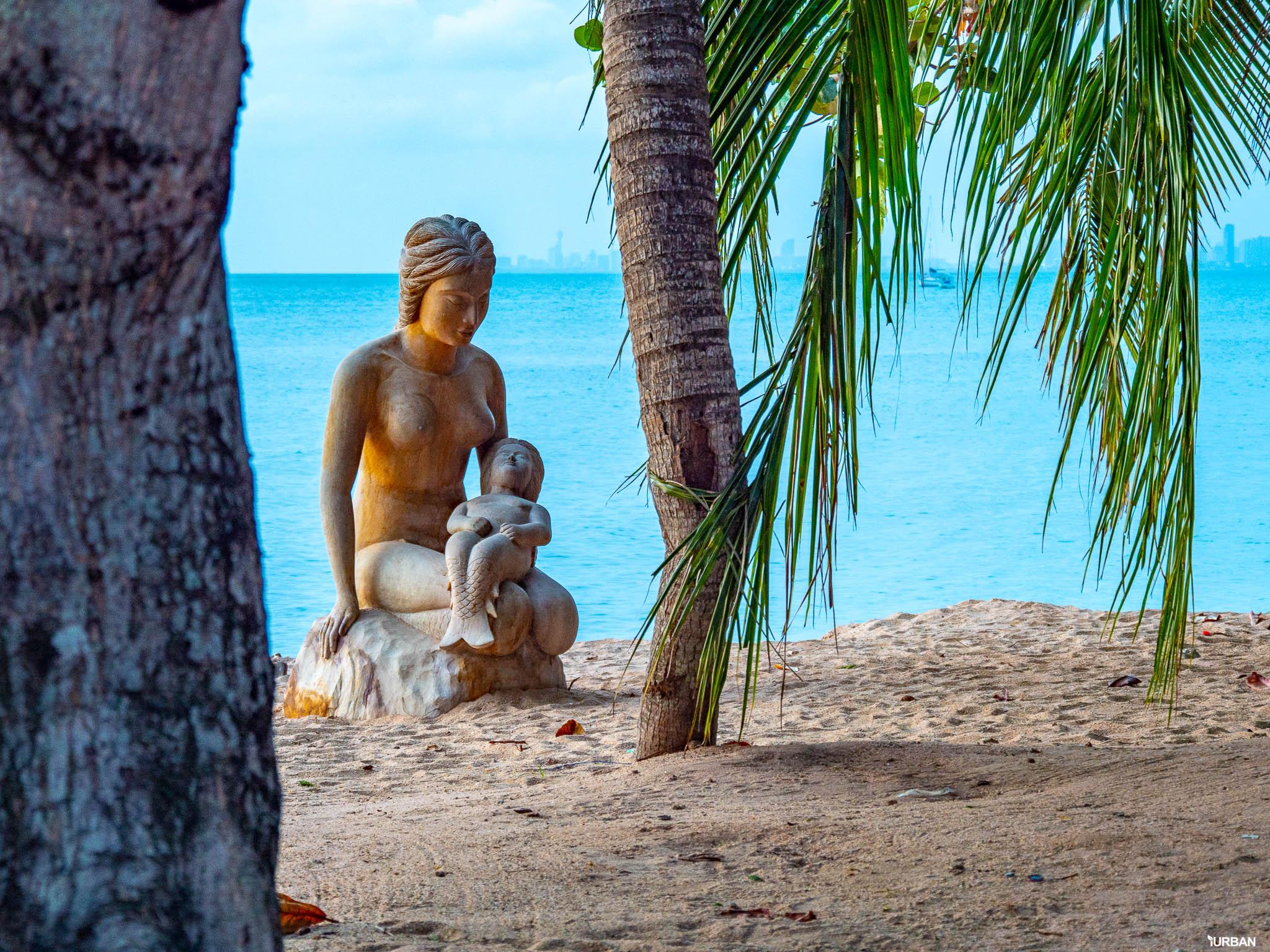 7 ชายหาดทะเลพัทยา ที่ยังสวยสะอาดน่าเที่ยวใกล้กรุงเทพ ไม่ต้องหนีร้อนไปไกล ก็พักได้ ชิลๆ 164 - Beach