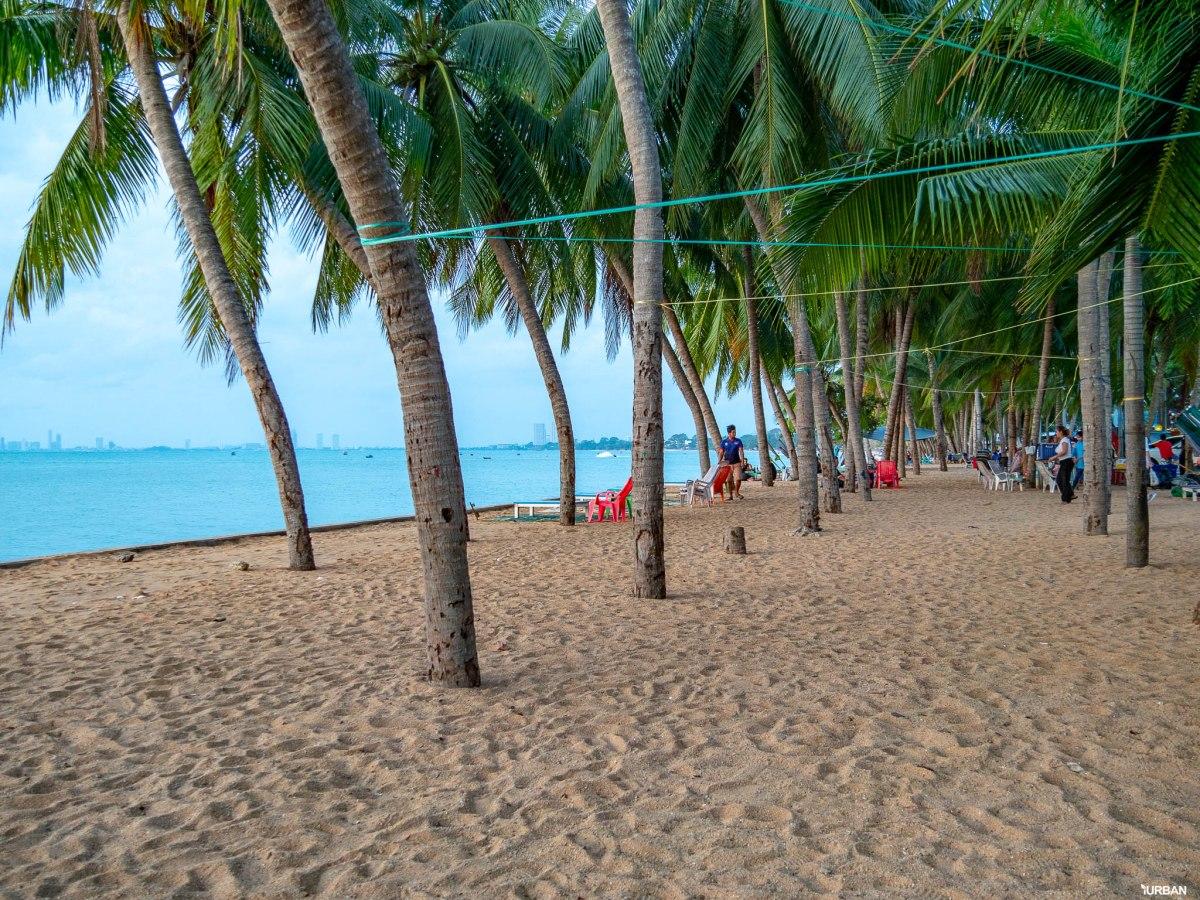 7 ชายหาดทะเลพัทยา ที่ยังสวยสะอาดน่าเที่ยวใกล้กรุงเทพ ไม่ต้องหนีร้อนไปไกล ก็พักได้ ชิลๆ 162 - Beach