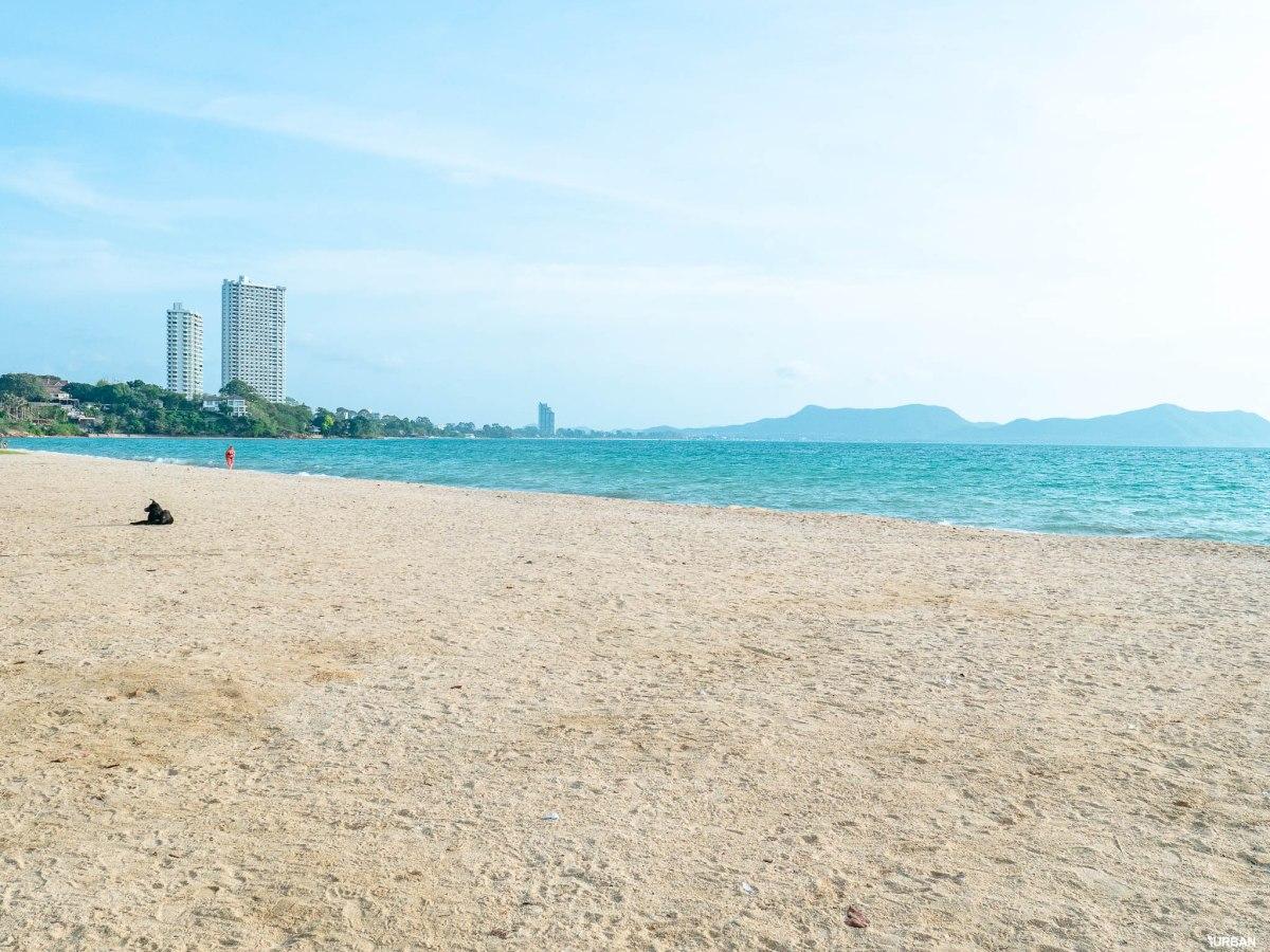 7 ชายหาดทะเลพัทยา ที่ยังสวยสะอาดน่าเที่ยวใกล้กรุงเทพ ไม่ต้องหนีร้อนไปไกล ก็พักได้ ชิลๆ 113 - Beach