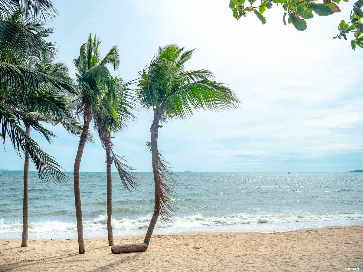 7 ชายหาดทะเลพัทยา ที่ยังสวยสะอาดน่าเที่ยวใกล้กรุงเทพ ไม่ต้องหนีร้อนไปไกล ก็พักได้ ชิลๆ 32 - Beach