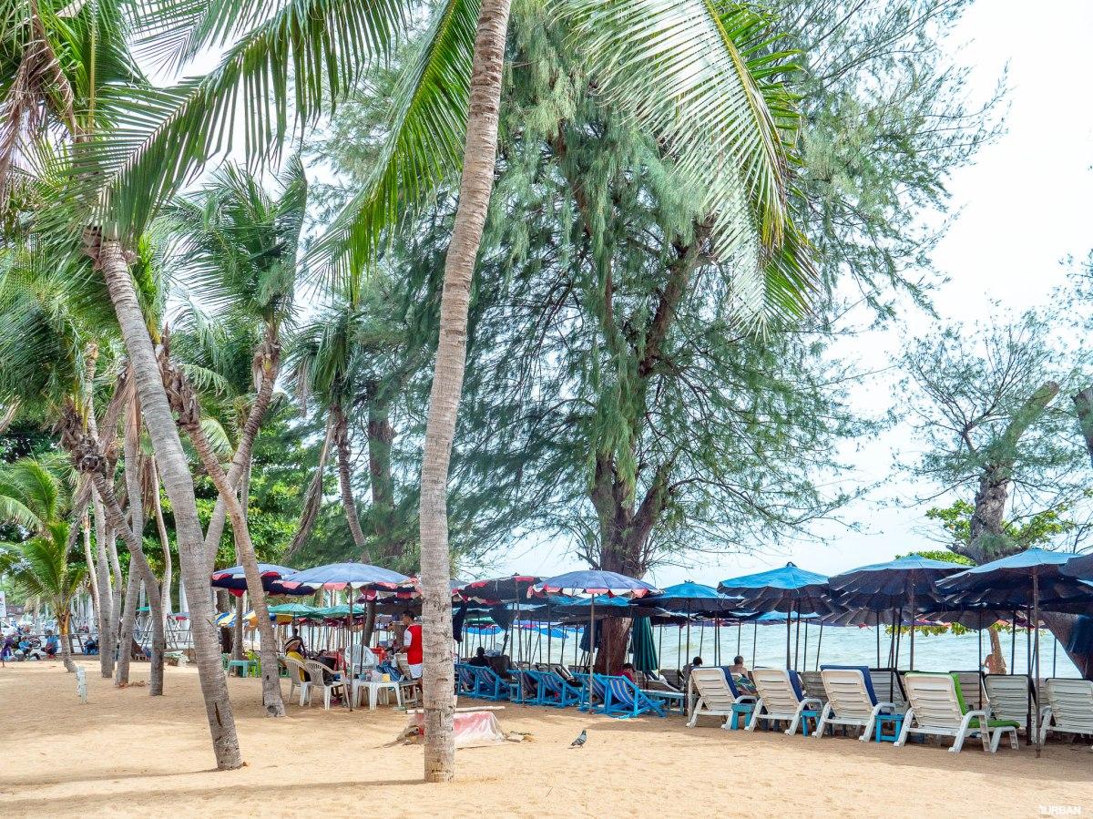 7 ชายหาดทะเลพัทยา ที่ยังสวยสะอาดน่าเที่ยวใกล้กรุงเทพ ไม่ต้องหนีร้อนไปไกล ก็พักได้ ชิลๆ 131 - Beach