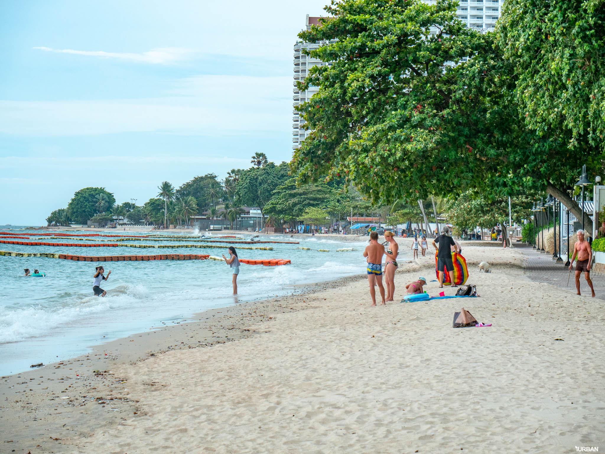 7 ชายหาดทะเลพัทยา ที่ยังสวยสะอาดน่าเที่ยวใกล้กรุงเทพ ไม่ต้องหนีร้อนไปไกล ก็พักได้ ชิลๆ 177 - Beach