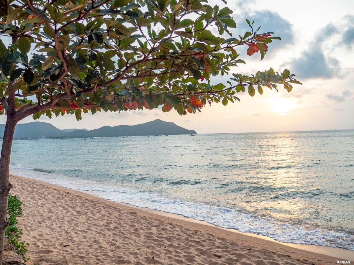 7 ชายหาดทะเลพัทยา ที่ยังสวยสะอาดน่าเที่ยวใกล้กรุงเทพ ไม่ต้องหนีร้อนไปไกล ก็พักได้ ชิลๆ 72 - Beach