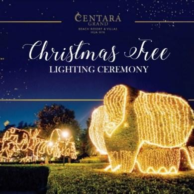 ฉลองเปิดไฟต้นคริสต์มาสต้อนรับเทศกาลแห่งความสุข พร้อมความงดงามดุจดินแดนเทพนิยาย ณ โรงแรมเซ็นทาราแกรนด์ หัวหิน 15 -