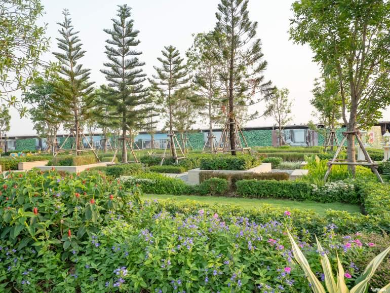รีวิวทาวน์โฮม Pleno ชัยพฤกษ์ เข้าเมืองง่ายถูกใจคนทำงาน สังคมดีบนส่วนกลาง 3 ไร่ งบแค่ 2.39 ล้าน 95 - AP (Thailand) - เอพี (ไทยแลนด์)
