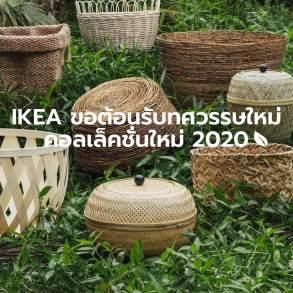 """อิเกีย ชวนตกแต่งบ้านรับทศวรรษใหม่ ด้วยแนวคิด """"ธรรมชาติอันยั่งยืน"""" 48 - IKEA (อิเกีย)"""