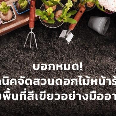 บอกหมด! เทคนิคจัดสวนดอกไม้หน้าร้อน เพิ่มพื้นที่สีเขียวอย่างมืออาชีพ 23 - ข่าวประชาสัมพันธ์ - PR News