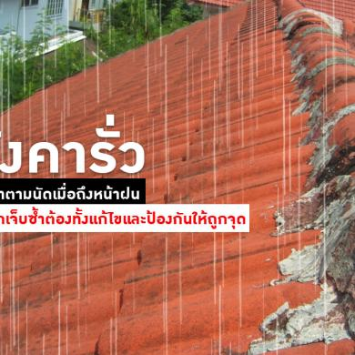 หลังคารั่ว ปัญหาที่มาตามนัดเมื่อถึงหน้าฝน ถ้าไม่อยากเจ็บซ้ำต้องทั้งแก้ไขและป้องกันให้ถูกจุด 46 -