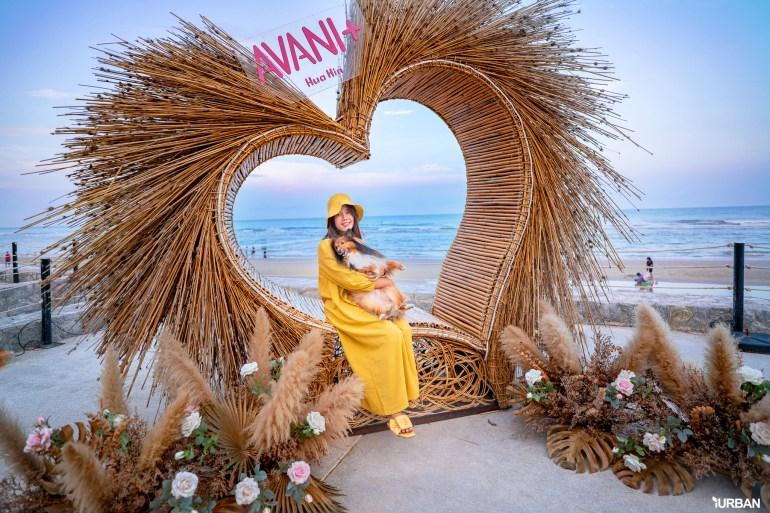 รีวิว Avani+ Hua Hin Resort พูลวิลล่าส่วนตัวสุดหรู หนึ่งในรีสอร์ทสุนัขพักได้ที่ดีที่สุดในไทยจากเชนจ์ Minor 61 - Avani