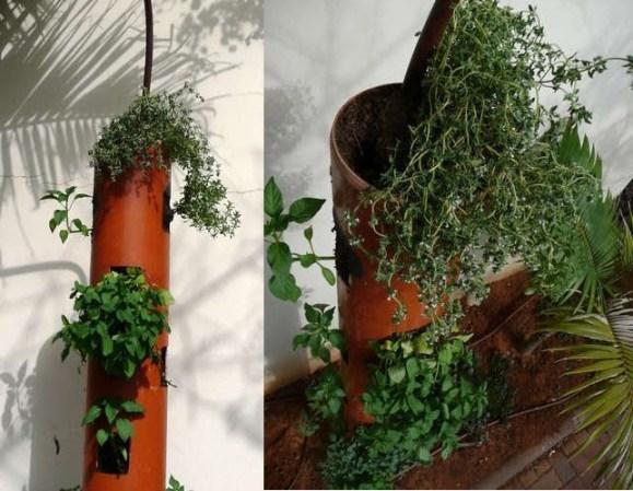 D.I.Y.สวนแนวตั้ง จากท่อ PVC 15 -