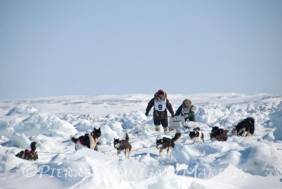 Ivakkak course de traîneau à chien edition 2010  Kangirsuk vers Aupaluk