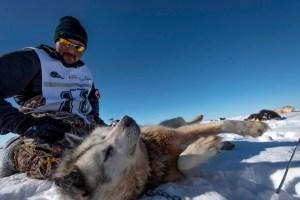Ivakkak 2017Umiujaq Inukjuak - Musher Aisa Surusilak from Team 10
