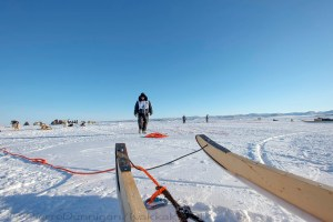 Ivakkak 2017Umiujaq Inukjuak - Team 4,Partner Peter Novalinga