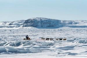 Ivakkak 2017Umiujaq Inukjuak - Team 4 Jani-Marik Beaulne and Peter Novalinga