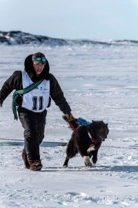 Ivakkak 2017Umiujaq Inukjuak - Partner Putulik Cain Saunders from Team 11