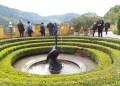 Swan Fountain at Hohenschwangau Castle