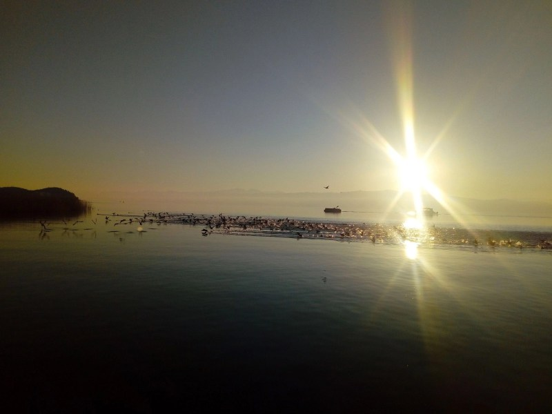 Birds leaving the lake as the sun goes down. Watching the sunset over Lake Ohrid. Beautiful sunset photos. Amazing sunset photos.