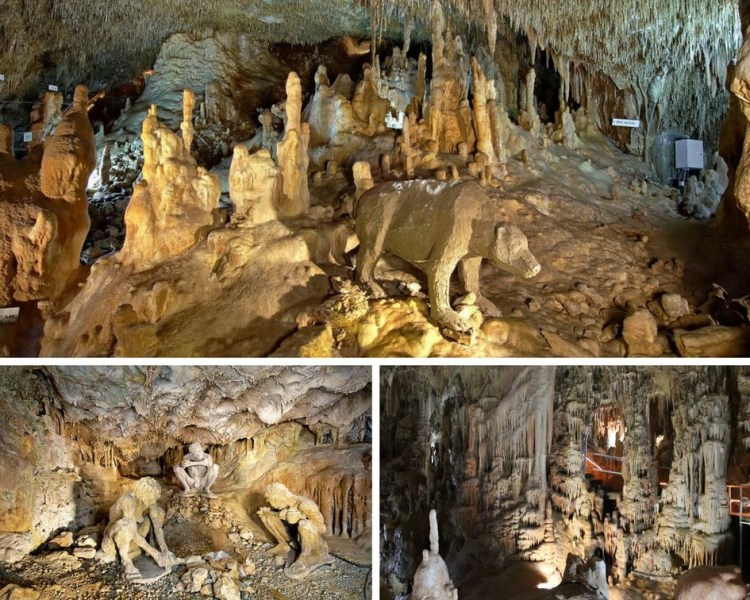 Collage of Petralona Cave from the stalactiteandstalagmite in the cave and a reconstruction of a bear in the cave.