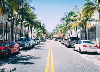 Cars parked on a street in the city of Miami in Florida with palm trees around the sidewalks.