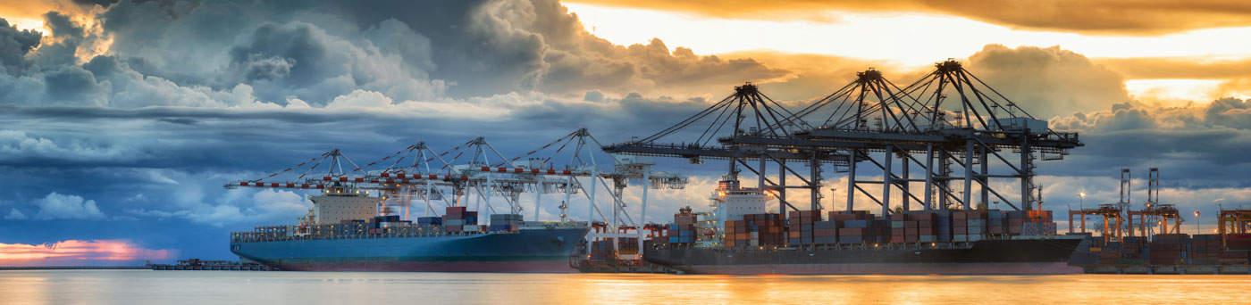 Dock Cranes - Crane Testing
