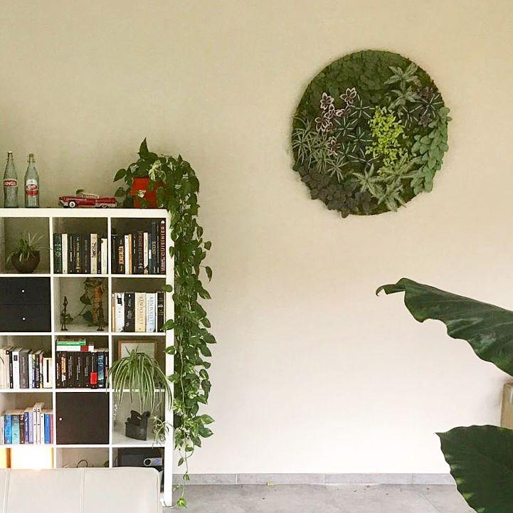 Proiectare Panou decorativ de hârtie în interior Do-it-yourself