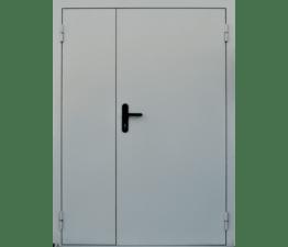 Дверь противопожарная двупольная EIS60 RAL