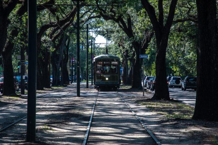 il tram di St. Charles Avenue sotto l'arco di querce