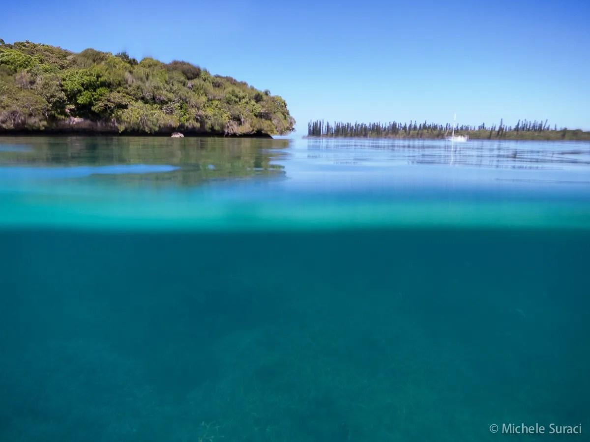 Giardini di corallo - Isola dei Pini