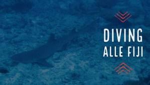 Articolo Diving Fiji - Immagine post