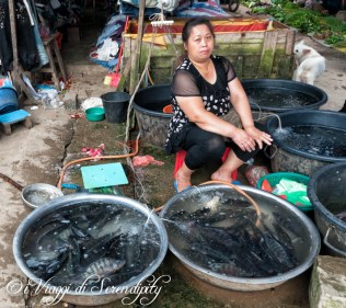 Luang Prabang Mercato Phousi pesci