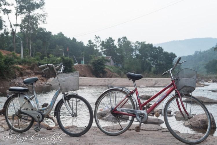 GTV foresta bicicletta