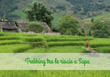 Trekking tra le risaie di Sapa