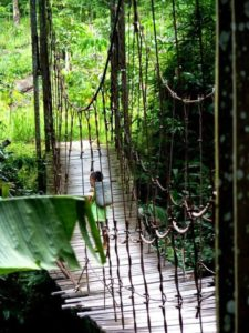 Indonesia - Monica Weber intervista