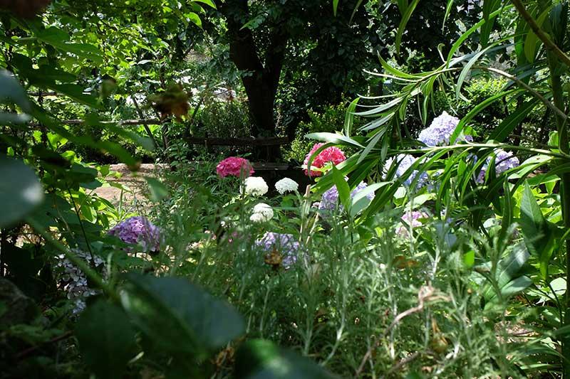 giardino segreto dell'anima
