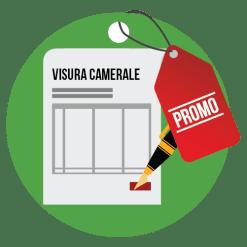 Visura camerale e partecipazioni in società