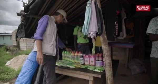 Télévision française : « La Face cachée du cacao ivoirien », un business « cannibale » et criminel (LE MONDE)