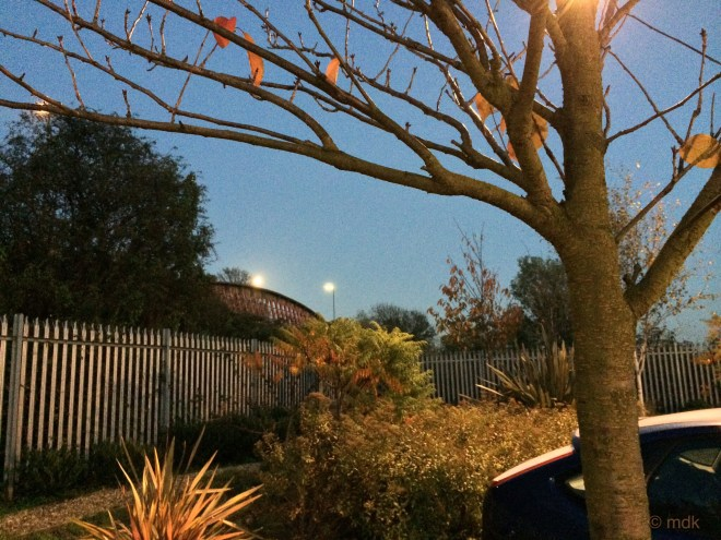 The moon eludes the iPhone camera
