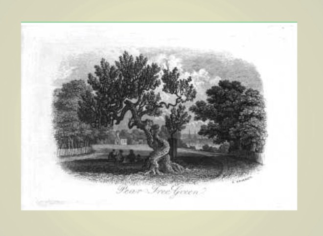 John William North - The Old Pear Tree
