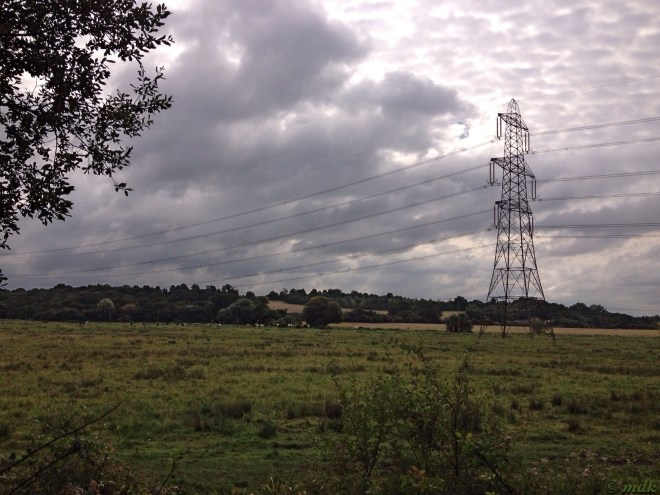 Pylons on the Hampshire Downs