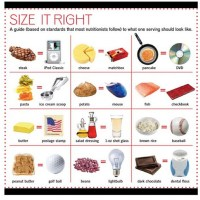 Portion Sizes and Serving Sizes for Weight Loss