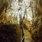 Se balader en fauteuil roulant dans une grotte : trop fou !