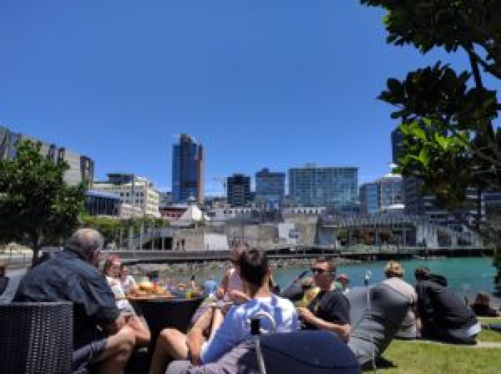 wellington harbour christmas summer