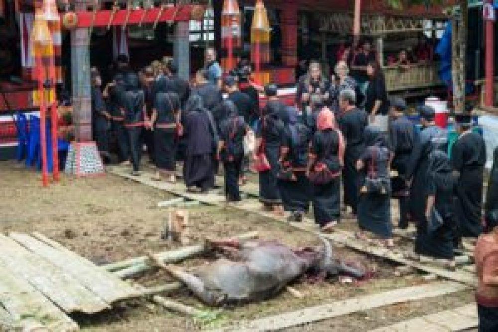 Une procession se met en marche dès la fin du sacrifice.