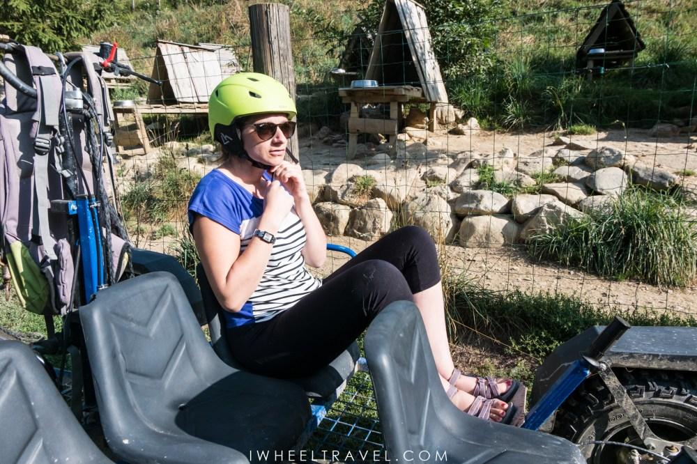 Cani kart handicap Pyrénées