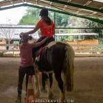 équitation handicap équithérapie