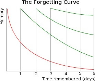 the forgetting curve memory