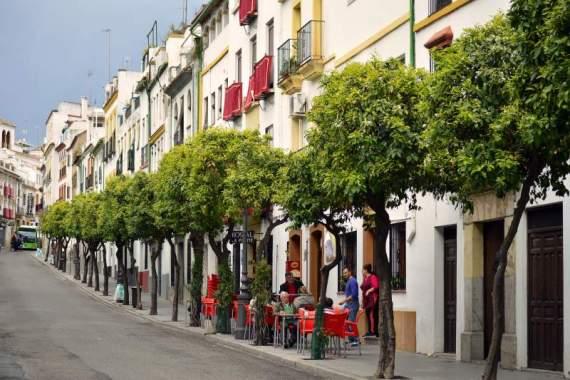 polite spanish restaurant córdoba