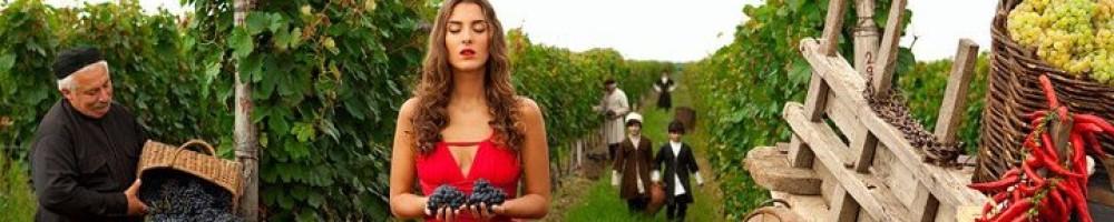 cropped-Georgian-wine.jpg